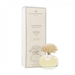 Fleur Aromatique Instant...